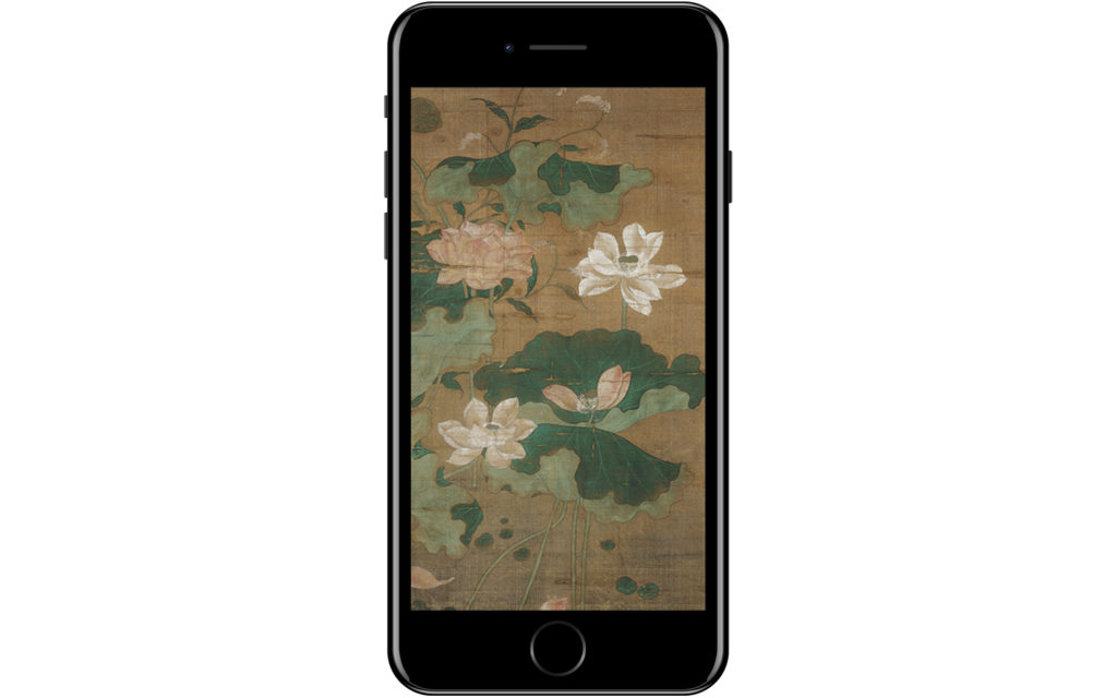 iPhone with picture of Lotus